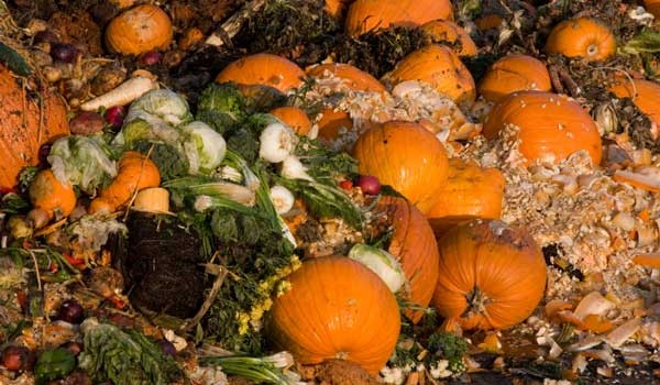 Why Food Waste in the UK will Only Increase